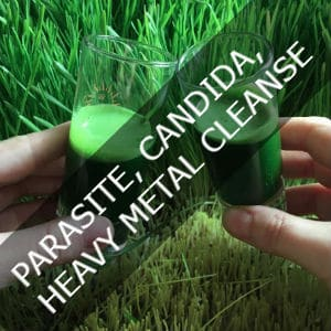 PARASITE, CANDIDA, HEAVY METAL CLEANSE