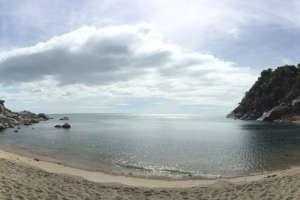 whynam beach